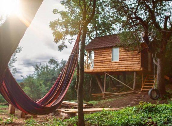 10 căsuțe în copac din România, cu priveliști uimitoare, unde vei scăpa de griji și de stres