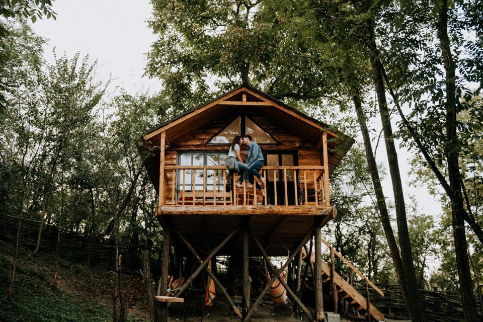 Top 10 căsuțe în copac din România, cu o priveliște de pus în ramă