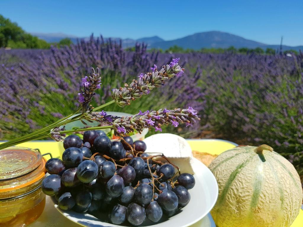 Vacanța la ofertă: weekend prelungit în raiul din Provence (640 de lei – zbor și cazare 3 nopți)