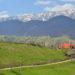 6 trasee uimitoare cu mașina, de care nu ai auzit, dar care te vor face să iubești România