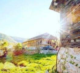 1 decembrie, în Apusenii de poveste, cei mai frumoși munți ai Europei (350 de lei, all inclusive)