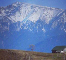 Aici e raiul pe pământ. Peștera, paradisul ascuns al României, de văzut o dată-n viață