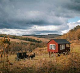 Câștigă o vacanță de vis în raiul de la Valea Verde și o cină de lux în Observatorul din sălbăticie