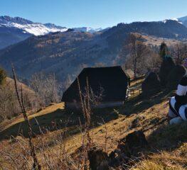 Poiana Andolia – raiul ascuns între munți, unde trebuie să ajungi o dată-n viață