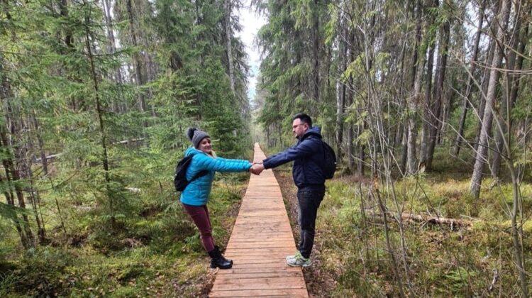 Descoperă pădurea fermecată din inima Bucovinei, unică în Europa